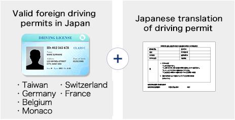 rental car drivers license check
